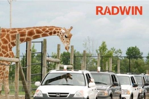 Radwin implementa una red inalámbrica en un parque safari de 3650 hectáreas
